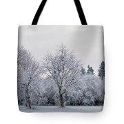 Frosty Park Tote Bag