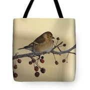 Frosty Perch Tote Bag