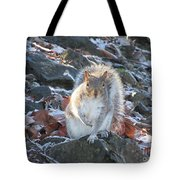 Frosty Squirrel Tote Bag