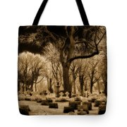 Frosty Tops Tote Bag