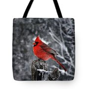 Frosty Wait Tote Bag