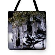 Frozen 4 Tote Bag