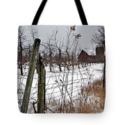 Frozen Apples Tote Bag by Stephanie Calhoun