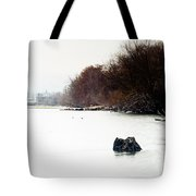 Frozen Columbia Tote Bag