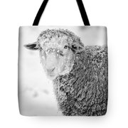 Frozen Dinner Tote Bag