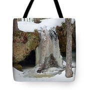 Frozen Fall Tote Bag
