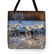 Frozen Fantasy  Tote Bag
