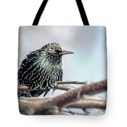Frozen Feathers Tote Bag