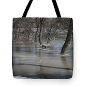 Frozen Floodwaters Tote Bag
