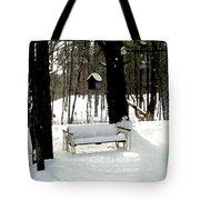 Frozen Glider Tote Bag