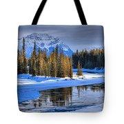 Frozen Jasper Paradise Tote Bag