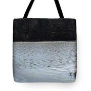 Frozen Lake 2 Tote Bag
