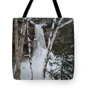 Frozen Tote Bag by Michael Peychich