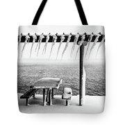 Frozen Picinic Tote Bag