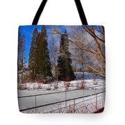 Frozen Pond / Chicago Botanic Garden Tote Bag