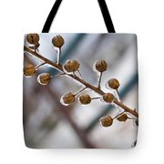 Frozen Seed Capsules In Time Tote Bag