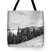 Frozen Valley 4 Bw  Tote Bag