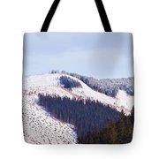 Frozen Valley 5 V2 Tote Bag
