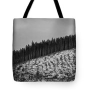 Frozen Valley 6 Bw Tote Bag
