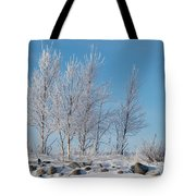 Frozen Views 2 Tote Bag