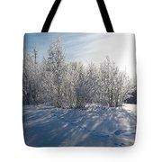 Frozen Views 3 Tote Bag