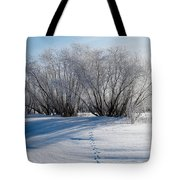 Frozen Views 4 Tote Bag