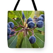 Fruit And Leaves Of The Red Bay Tote Bag