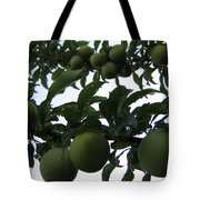 Fruit And Sky_raindrops Tote Bag