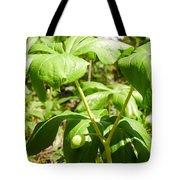 Fruit Of The Mayapple Tote Bag