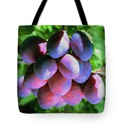 Fruit Plums  On Tree Tote Bag