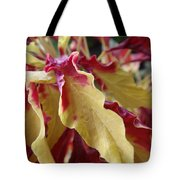 Fruit Roll Up Plant Tote Bag