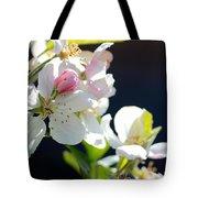 Fruit Tree Blossom Tote Bag
