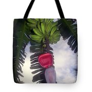 Fruitful Beauty Tote Bag