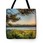 Frye Lake Flowers Tote Bag