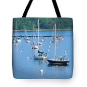 Ft Cleary,ct Tote Bag