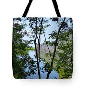Ft Zachary Taylor  Tote Bag