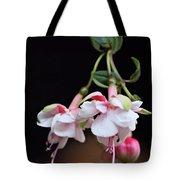 Fuchsia 2 Tote Bag