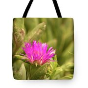 Fuchsia Bloom Tote Bag