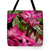 Fuchsia Christmas Cactus Tote Bag