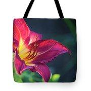 Fuchsia Glow Tote Bag