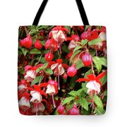 Fuchsia Pastel Tote Bag