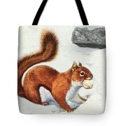 Fuertes, Louis Agassiz 1874-1927 - Burgess Animal Book For Children 1920 Red Squirrel Tote Bag
