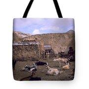 Fuerteventura IIi Tote Bag