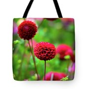 Full Bloom Reds Tote Bag