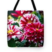Full Blooms Tote Bag