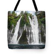 Full Frontal View Tote Bag