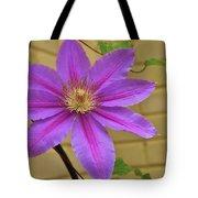 Full On Lovely Tote Bag