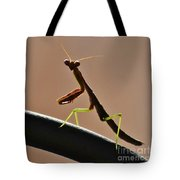 Fully Aware Tote Bag