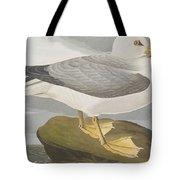 Fulmar Petrel Tote Bag