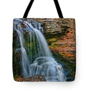 Fulmer Falls - Childs State Park Tote Bag